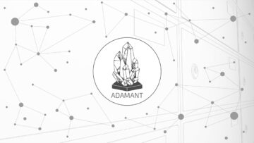 Unboxing a Blockhain based ADAMANT Messenger