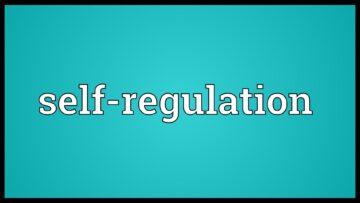 Japan's financial regulator grants cryptocurrency industry self-regulatory status