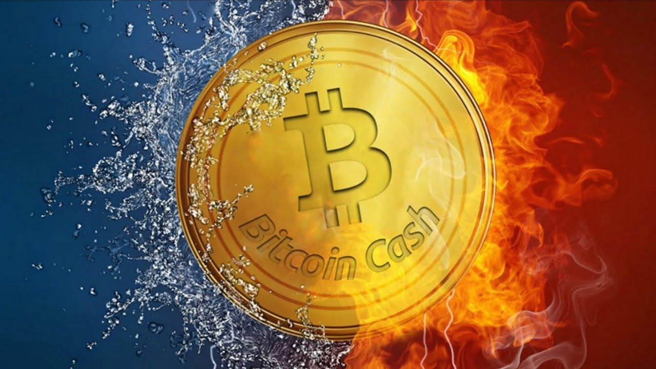 bitcoin cash news hard fork