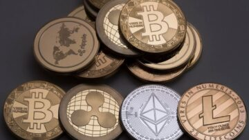 How do cryptocurrencies differ from each other?