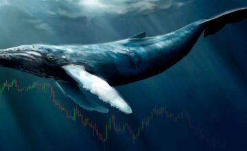 Whales are Testing Blockchain?