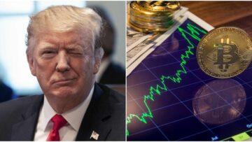 CZ: Trump will definitely buy Bitcoin (BTC)