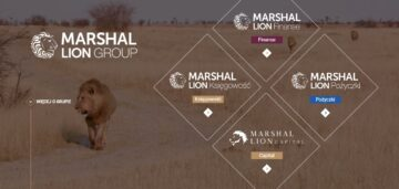Marshal Lion Group: 25% discount on token price