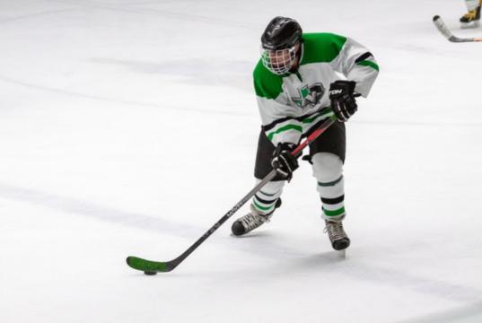 Betting With Crypto on Ice Hockey and Making Profits